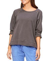 XCVI Gideon Pullover Sweater - Gray