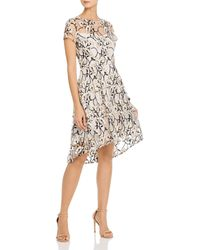 Adrianna Papell Graphic Radiance Embroidered Dress - Multicolour