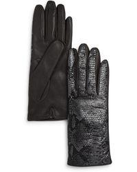 Bloomingdale's Python Printed Leather Gloves - Black