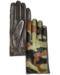 Bloomingdale's Cashmere Lined Calf Hair Gloves - Multicolour