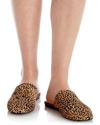 Aqua Bae Leopard Print Calf Hair Mules - Multicolour