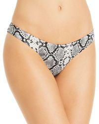 Aqua Swim Snake Print Bikini Bottoms - Black