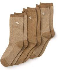 Ralph Lauren Lauren Tweed Trouser Socks - Brown