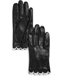 Kate Spade Scalloped Leather Tech Gloves - Black