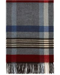Bloomingdale's Striped Plaid Scarf - Gray