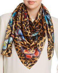 Echo Butterfly Leopard Print Silk Scarf - Multicolour