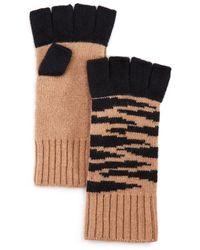 Aqua Tiger Fingerless Cashmere Gloves - Black