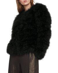 BCBGMAXAZRIA Feather Jacket - Black