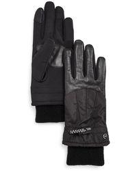 Echo Superfit Tech Gloves - Black