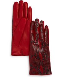 Bloomingdale's Python Printed Leather Gloves - Red