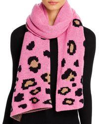 Aqua Cashmere Leopard Cashmere Scarf - Pink