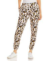 Aqua Athletic Leopard Print Joggers - Multicolour