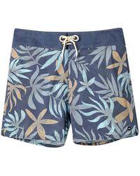 Animal Tamatoa Boardshorts - Blau