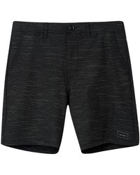 Animal Darwin Stripe Shorts - Schwarz