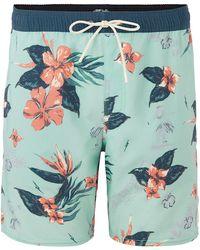 O'neill Sportswear Bloom Boardshorts - Grün