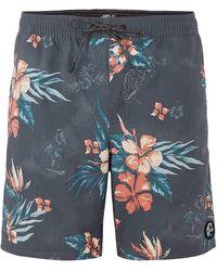 O'neill Sportswear Bloom Boardshorts - Blau