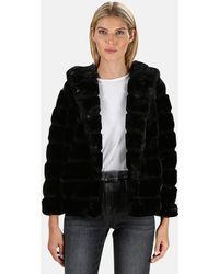Apparis Goldie Faux Fur Coat - Black