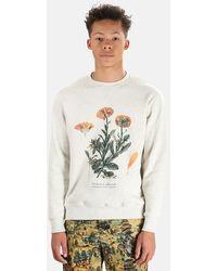 President's Calendula Embroidery Sweatshirt Jumper - White