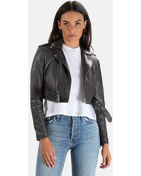 IRO Leufy Leather Jacket - Multicolor