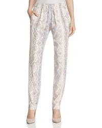 T Tahari - Womens Bianca Printed Flat Front Casual Pants - Lyst