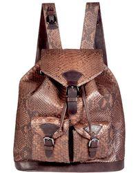 Cashhimi | Moulton Genuine Python Backpack | Lyst