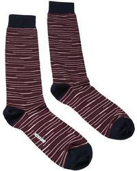 Missoni - Gm00cmu5231 0003 Maroon/navy Knee Length Socks - Lyst