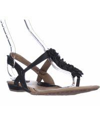 Born - B.o.c. Concept Sonoran Jewelled T-strap Sandals, Black - Lyst