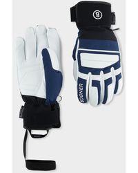 Bogner Andi Gloves - Blue