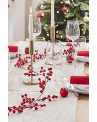 Boohoo Ginger Ray Foliage Garland With Red Berries