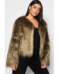 Boohoo Plus Shaggy Faux Fur Jacket - Green