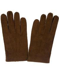 Merola Gloves Pecary - Brown