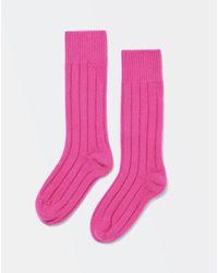 Bottega Veneta Socken - Pink