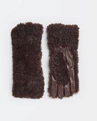 Bottega Veneta Gloves - ブラウン