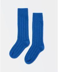 Bottega Veneta Socken - Blau