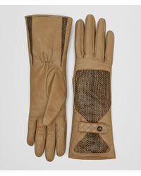 Bottega Veneta - Camel Lamb Ayers Glove - Lyst