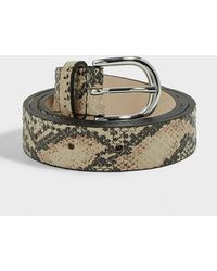 Isabel Marant Zap Python-print Leather Belt - Multicolour