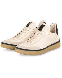 Ecco Sneaker STREET TRAY - Natur