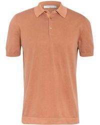 Circolo 1901 Jersey-Poloshirt - Mehrfarbig