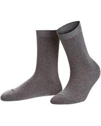 FALKE Socken COSY WOOL - Grau