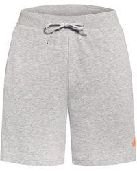 adidas Sweatshorts SPORTSWEAR LIGHTWEIGHT - Grau