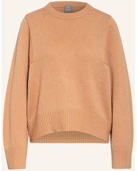 FTC Cashmere Cashmere-Pullover - Mehrfarbig