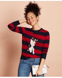 Wool Sweater Merino Patterned Dog ukiTZPXO
