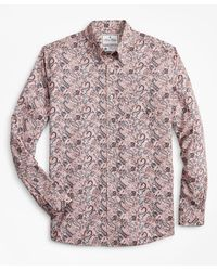 Brooks Brothers Luxury Collection Regent Fitted Sport Shirt - Pink