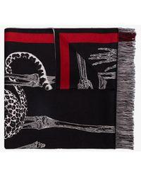 Alexander McQueen Black Animal Print Wool Scarf