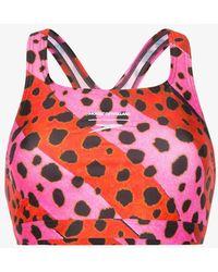 House of Holland Cheetah Stripe Bralet Bikini Top - Pink