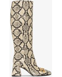 Gucci Neutral Horsebit Baby 75 Snake Print Knee-high Boots - Multicolor