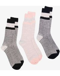 Anonymous Ism Three-piece Sock Set - Grey