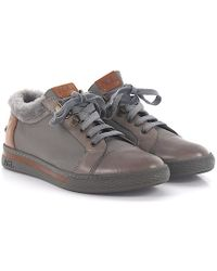 Agl Attilio Giusti Leombruni - Lace Up Shoes Calfskin Lamb Fur Lambskin Logo Brown Grey - Lyst