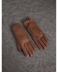 Burberry - Deerskin Gloves In Chestnut Brown - Women | - Lyst
