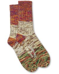 Burrows and Hare Marley Sock - Multicolour